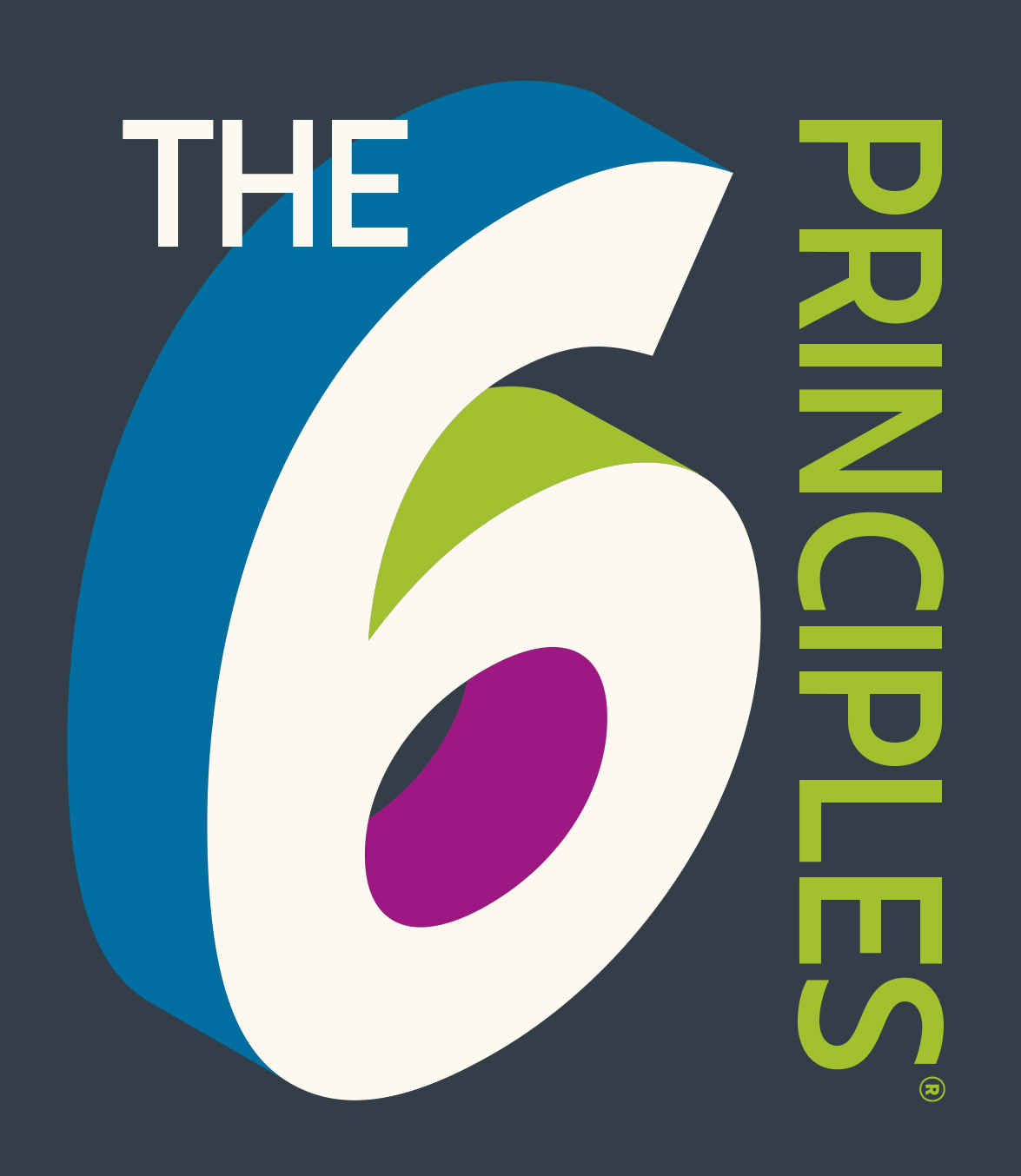 The 6 Principles Institute™: K-12